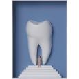 Steiler Zahn